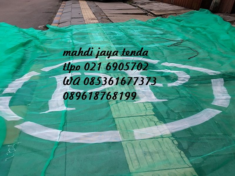 jaring kasa hijau